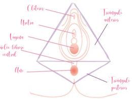 qué es masaje perineal